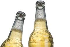 Крупный план холодного пива Стоковые Фотографии RF