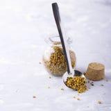 Крупный план цветня пчелы Стоковая Фотография