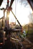 Крупный план цепи велосипеда снял outdoors на заходе солнца Стоковые Фото