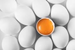 крупный план цыпленка eggs белизна Стоковые Изображения