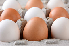 Крупный план яичек в коробке картона Стоковые Изображения