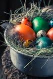 Крупный план colourfull eggs для пасхи на сене Стоковые Изображения RF