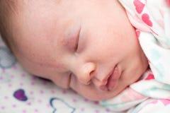 Крупный план newborn младенца спать в шпаргалке, Стоковое Изображение RF