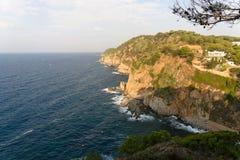 Крутое морское побережье и высушенная ветвь сосны с конусами стоковые изображения rf