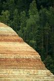 Крутой лес зеленого цвета каньона банка Стоковые Изображения