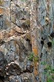 Крутой утес с ценными минералами Стоковое Изображение