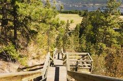 Крутые деревянные лестницы Стоковое Изображение