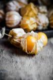 Крыжовники накидки крупного плана оранжевые органические Стоковые Фотографии RF