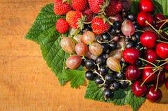 Крыжовник, клубника, вишня и blackcurrant Стоковые Фотографии RF