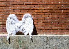 Крыла Анджела на предпосылке кирпичной стены Городской пейзаж Мадрида стоковая фотография