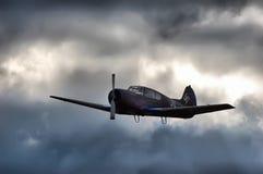 крыла войны Стоковая Фотография RF