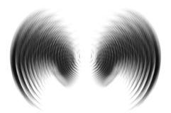 Крыла в нерезкости движения - черноте Стоковые Фотографии RF
