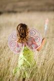 крыла девушки маленькие Стоковые Фотографии RF