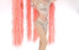 Крыла меха с красочным декоративным костюмом сексуальным стоковая фотография rf