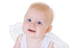 крыла младенца ангела Стоковое Изображение
