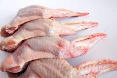 крыла цыпленка Стоковая Фотография RF