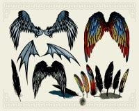 крыла Стоковое Изображение