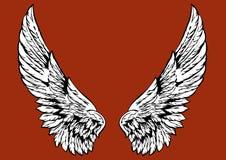 крыла Стоковые Изображения