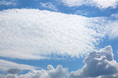 крыло ангела Стоковое Фото
