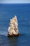 крымский ландшафт Стоковое Фото