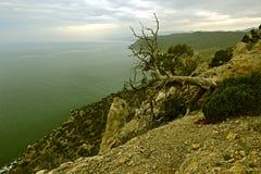 Крым стоковые изображения