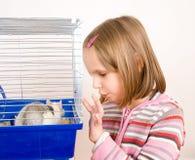 крыса детских игр Стоковые Изображения RF