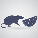 Крыса и часть сыра с отверстиями на серой предпосылке Стоковое Фото