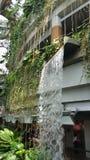 Крытая структура водопада Стоковая Фотография RF