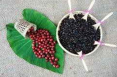 Крытое оформление, кофейное зерно, предпосылка искусства кафа Стоковые Изображения