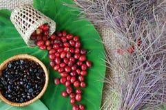 Крытое оформление, кофейное зерно, предпосылка искусства кафа Стоковое Изображение RF