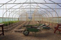 Крытое садоводство Стоковые Фотографии RF