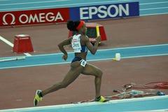 крытое чемпионатов атлетики европейское стоковые изображения