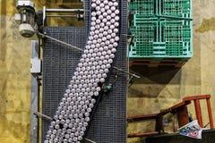 Крытый взгляд фабрики напитков Напитки выравнивают взгляд сверху стоковая фотография