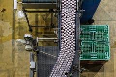 Крытый взгляд фабрики напитков Напитки выравнивают взгляд сверху стоковые фото
