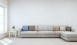 Крытый завод на деревянном журнальном столе и большой софе с пустой белой предпосылкой бетонной стены, расслабляющей зоной около  Стоковое фото RF