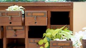 Крытый малый милый зеленый сад декоративный Стоковая Фотография
