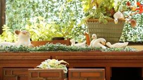 Крытый малый милый зеленый сад декоративный Стоковое фото RF