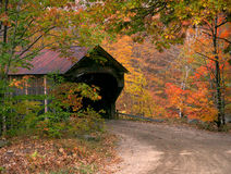 Крытый мост Вермонта Woodstock в осени Стоковые Изображения RF