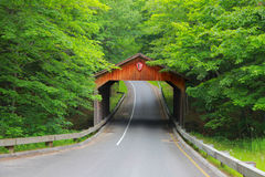Крытый мост в Мичигане стоковое изображение