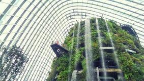 Крытый сад и водопад стоковое изображение rf