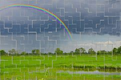 Крыть черепицей черепицей изображение радуги и дождя над полем Стоковые Изображения RF