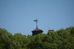 Крыша в лесе Стоковое Изображение