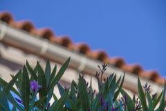 Крыша в Франции Стоковое Изображение RF