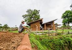 Крыша дома грязи Стоковые Фото