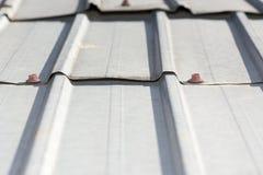 Крыша листа Стоковое фото RF