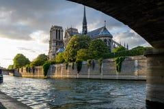 Крыша Нотр-Дам Парижа с рекой Сеной в заходе солнца стоковые фото