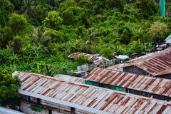 Крыша олова с лесом Стоковые Изображения RF