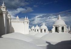 Крыша собора Леона Стоковое Фото