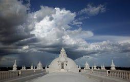 Крыша собора Леона Стоковые Изображения