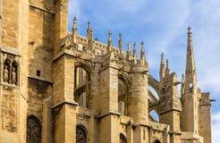 Крыша собора Нарбонны - Франции, Лангедок-Русильона Стоковое Изображение RF